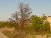panorama-dul-hedvika.jpg