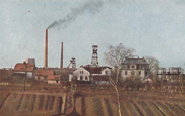Dul-Hedvika-Petrvald-02
